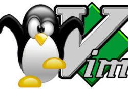 tux-vim-featured